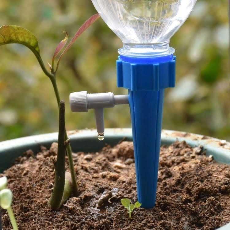 Giải pháp tưới cây tự động cho ngôi nhà của bạn